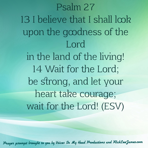 Psalm 27: 13-14